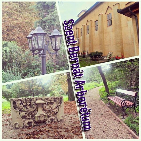 arboretum_instagram